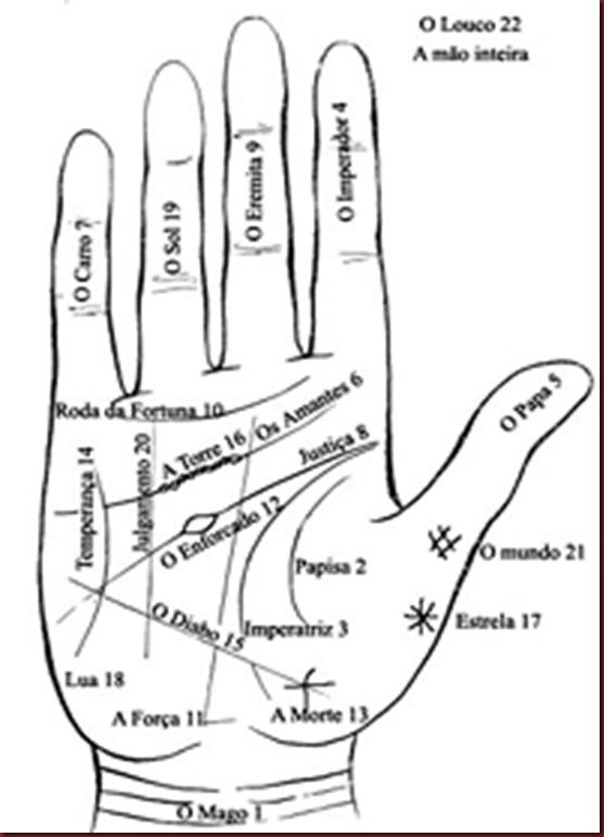 dedos das maos