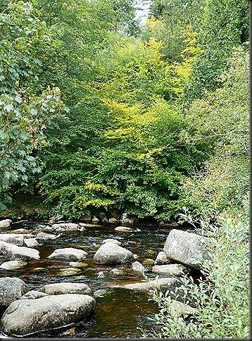 dartmoor 029