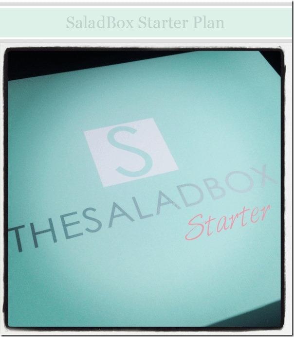 SaladBox-starter