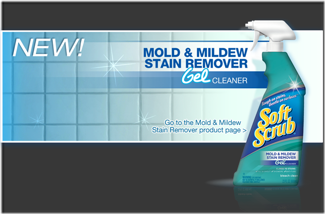 ss-mold-mildew-home-billboard3