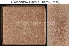 c_CactusThornFrostEyeshadowMAC2