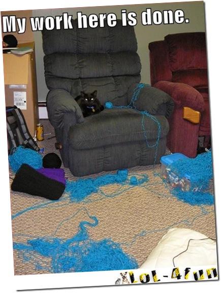 http://lol-4fun.blogspot.com/ Cats  VS  Dogs  (LoL-4fun Edition)