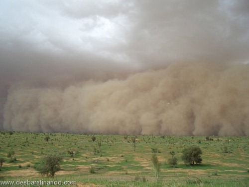 tempestade de areia desbaratinando  (30)