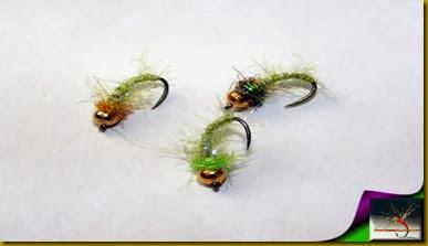 flies 036