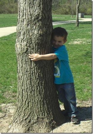treehuggerdylan