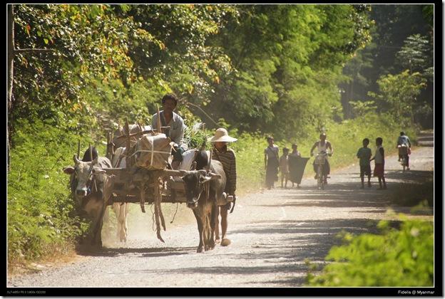 Myanmar372