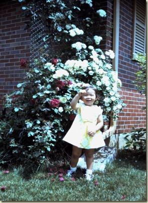 spring-1971-2