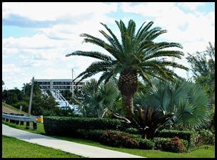 3 - Tour - Palms at Bridge