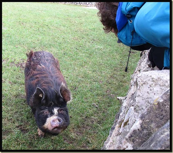 Sue chats to a new friend