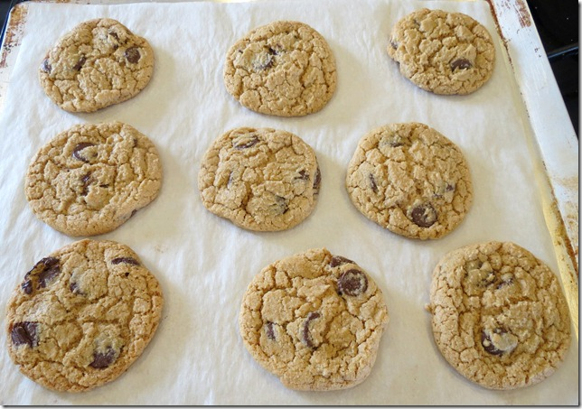 Whole Wheat Chocolate Chip Cookies 2