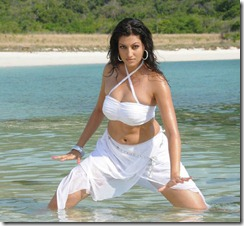 Hamsa Nandini _in swim wear hot