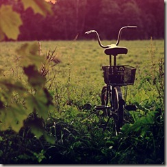 my_bicycle_by_zi0oto-d4bdxrb