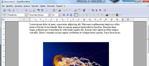 libre-office-interfaccia-documento-testo