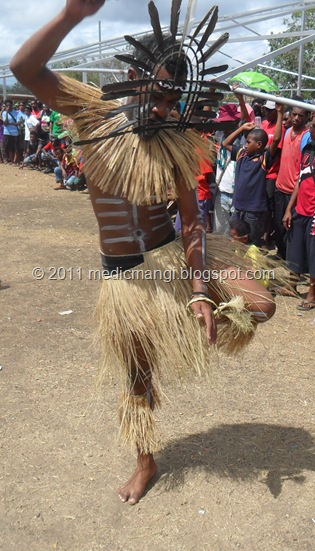 Kiwai Dancer from Western Province, Papua New Guinea