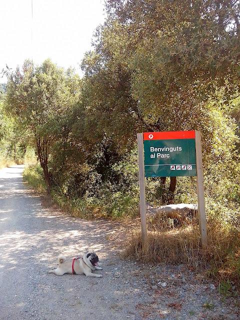 entrada al parque del montseny.