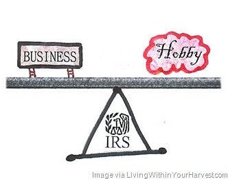 hobby-vs-business