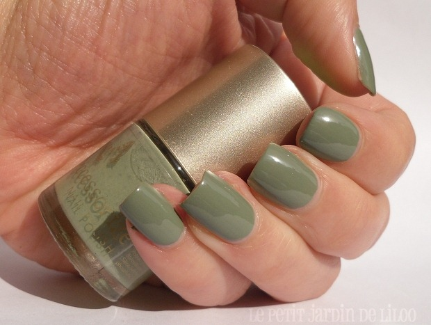 004-accessorize-nail-polish-wyoming-notd-review-swatch