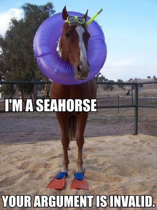 I'm a seahorse. Your argument is invalid.