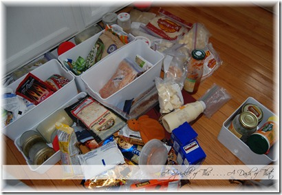 Freezer Food to Organize {A Sprinkle of This . . . . A Dash of That}