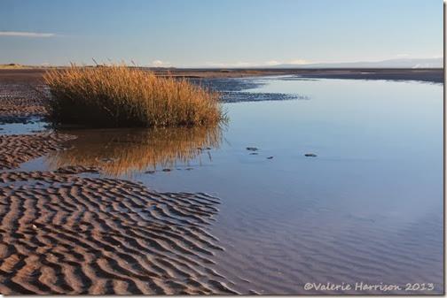 30-mersehead-beach