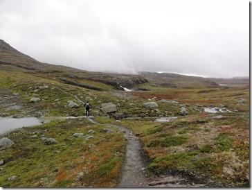 norwegian_tundra