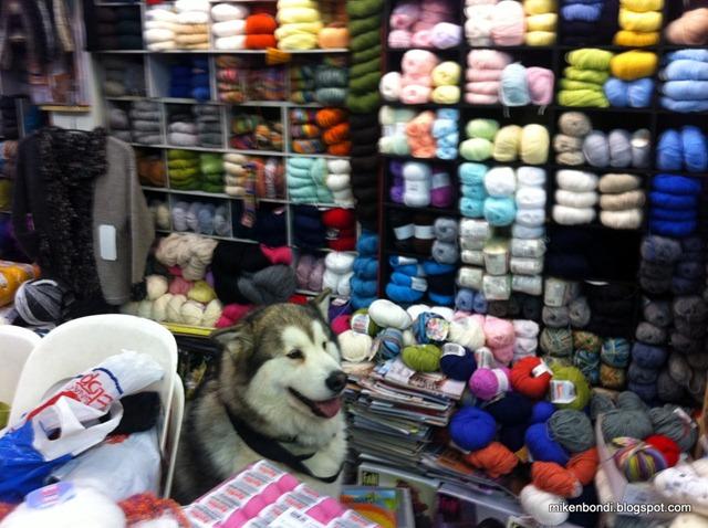 Josette Jourdain / Anny Blatt wool store Toulouse
