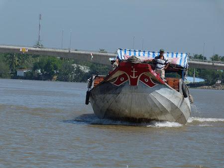 vas in Delta Mekong