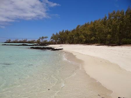 Insula cerbilor