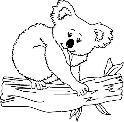 Koala Para Colorear