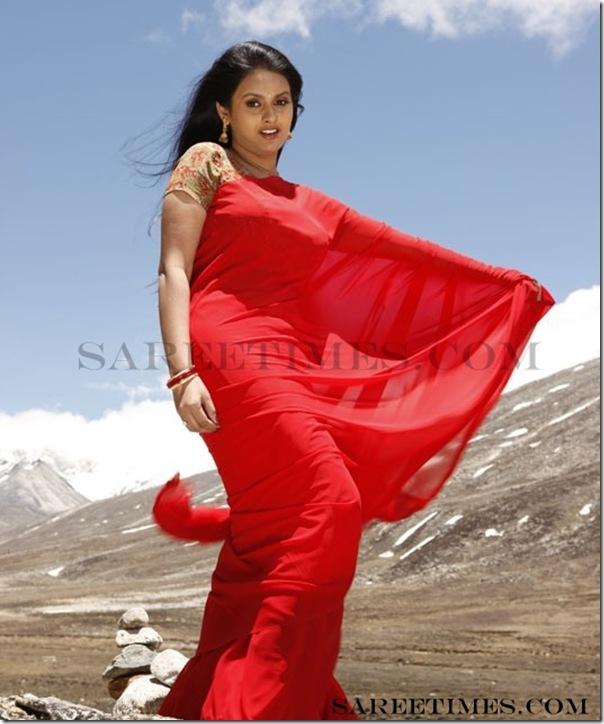 Kalyani_Designer_Sarees (3)