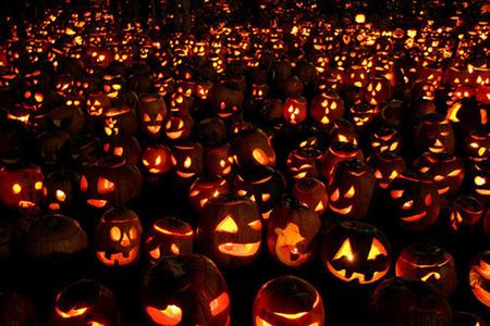 Halloween Pumpkins 023