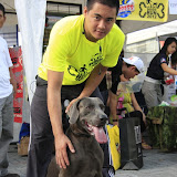 Pet Express Doggie Run 2012 Philippines. Jpg (256).JPG