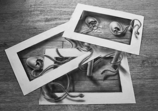 snake eggs anamorphic drawing