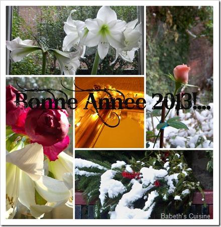 Collage Bonne année 2013