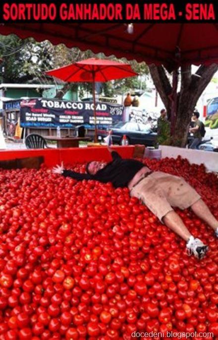 tomates35