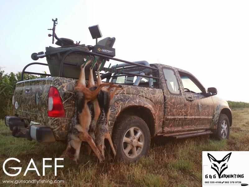 Jaracal-Caracal-Hunting (7).jpg