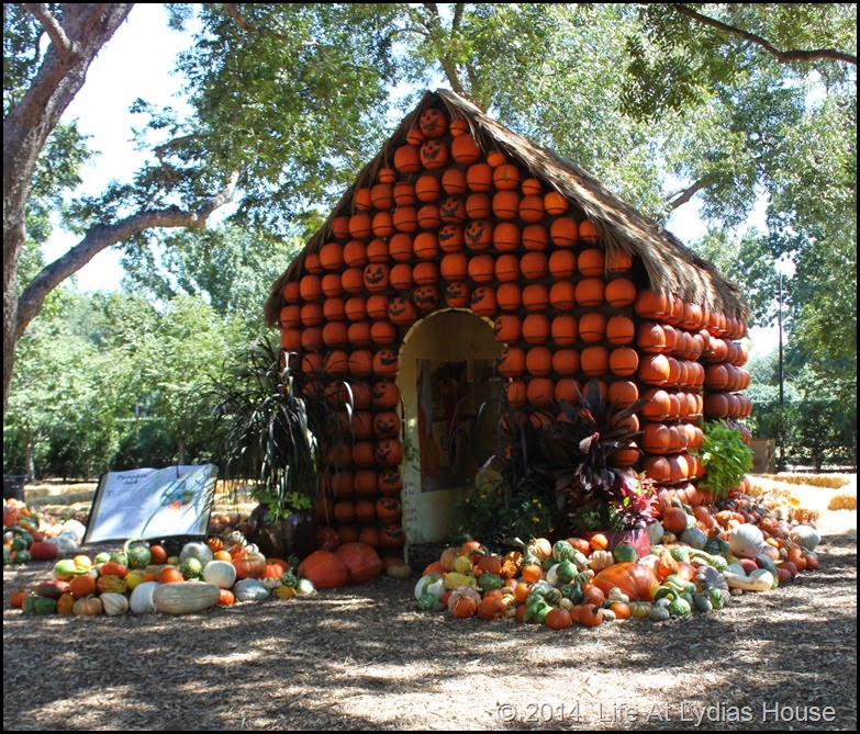 Dallas Arboretum - pumpkin festival-pumpkin house 4