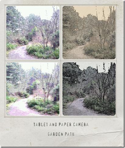 paper-camera-path