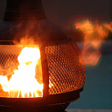 Flames - IMG_3980.JPG
