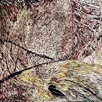 Houle herbeuse II  78x56cm sur bois