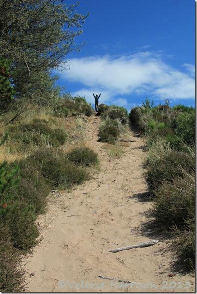 45-dunes