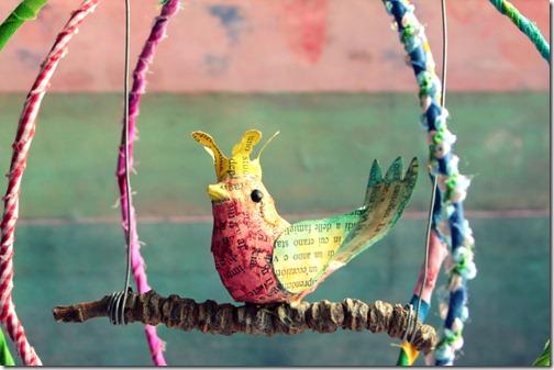 uccellino in gabbia libera-004