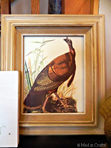 audubon turkey print in thrifted frame