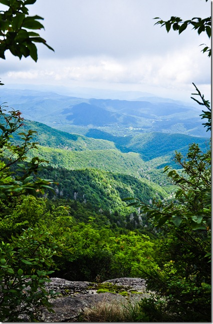 MT Mitchell view