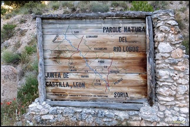 Rio Lobos 2014-07-12 003_editado-1