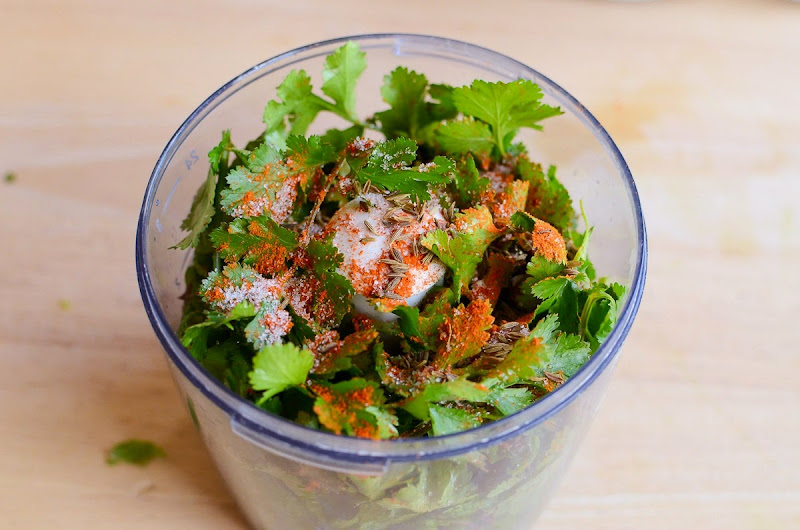 mint cilantro chutney-9496