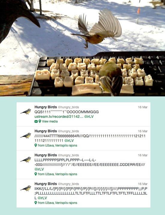 Pássaros_twitter (1)