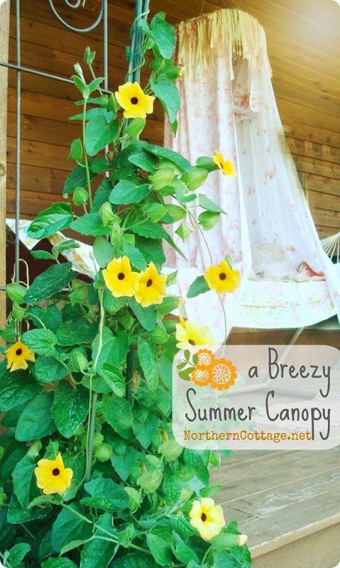 A BReeZY SuMMeR Canopy {NorthernCottage}