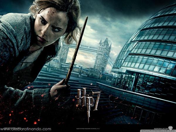 harry-potter-and-the-deathly-hallows-wallpapers-desbaratinando-reliqueas-da-morte (27)
