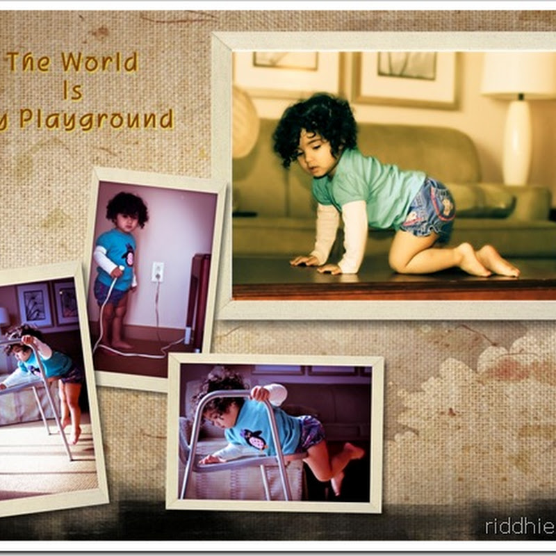 The World Is My Playground
